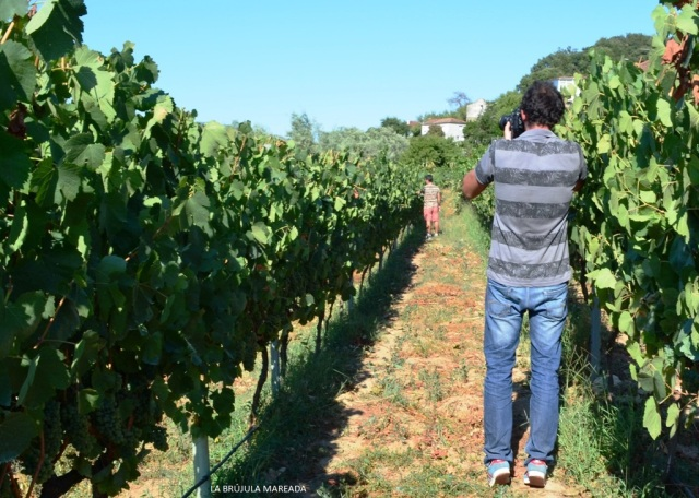 Matteo Bertolino tomando imágenes durante su trabajo de campo para la exposición Cenlle: Terra, Xente, Viño (Ourense)