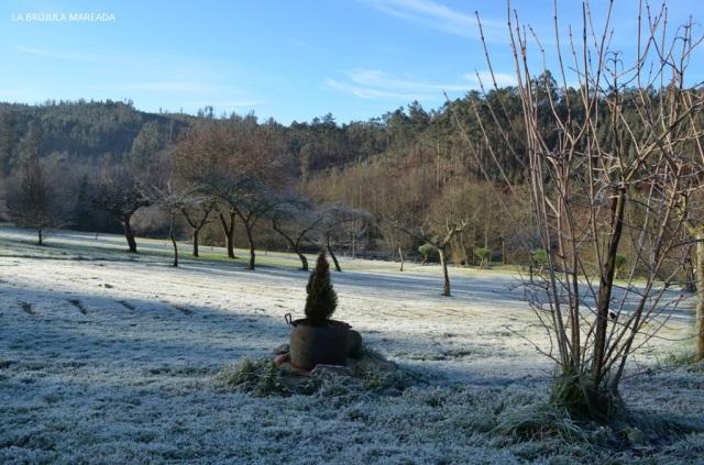 Así de bonito, y helado, estaba el prado de la Casa Rural A Graña da Acea (Monfero) cuando nos levantamos la primera mañana.